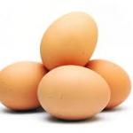 ไข่ไก่เพิ่มความชุ่มชื้นผิวพรรณ