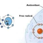 อนุมูลอิสระ (รีแอคทีฟออกซิเจน) เป็นตัวทำให้ผิวตื่นตัว หาใช่ออกซิเจนที่ดีไม่!