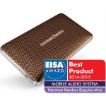 Harman Kardon Esquire Mini (Brown)