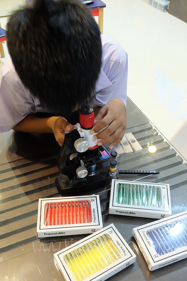 Slide สำหรับกล้อง Microscope (กล้องจุลทรรศน์)