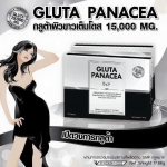 กลูต้าพานาเซีย (Gluta Panacea)