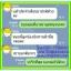 สมุนไพรเสน่ห์นาง อกฟู รูฟิต แก้ปวดประจำเดือน ตกขาว thumbnail 14