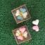 สบู่หัวใจ 4 ก้อนและดอกไม้ แพ็คกล่องไม้ พร้อมป้ายชื่อฟรี thumbnail 1