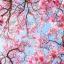 Japanese Cherry Blossom ขนาดเล็กพกพา (สินค้า Pre Order) thumbnail 2
