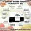 กลูต้าพานาเซีย บายแป้ง 30 แคปซูล GLUTA PANACEA BY PANG thumbnail 4