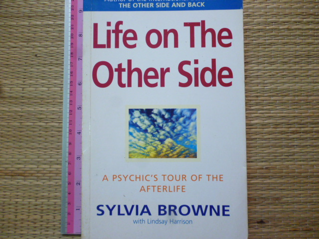 Life on The Other Side (A Psychic's Tour of the Afterlife)