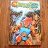 Thunder Cats Annual 1991