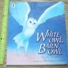 White Owl Barn Owl (Paperback)