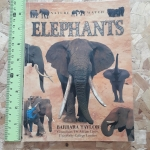ELEPHANTS (Nature Watch)