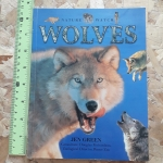 WOLVES (Nature Watch)