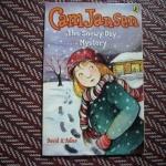 Cam Jansen 24: The Snowy Day Mystery