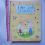 Baby's Book of Little Firsts