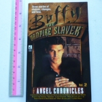 Buffy the Vampire Slayer Vol.2: the Angel Chronicles